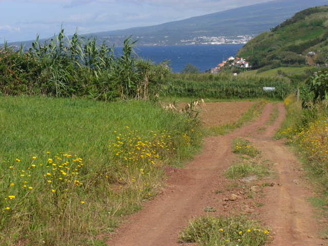 country life in the Azores