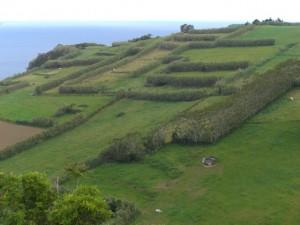 Hills on Faial