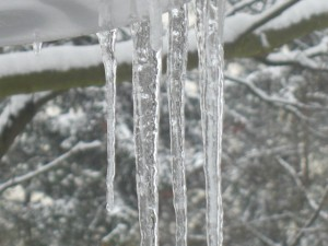 Icicles are back again!