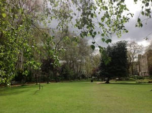 Park at UCL