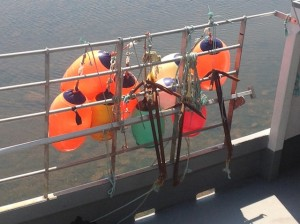 more buoys