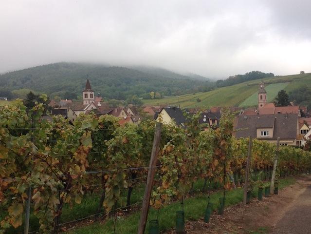 View onto Riquewihr
